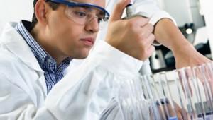 Forschung Stammzellen gegen Erblindung