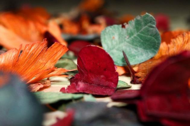 Myrrhe und Weihrauch als Naturheilkräuter