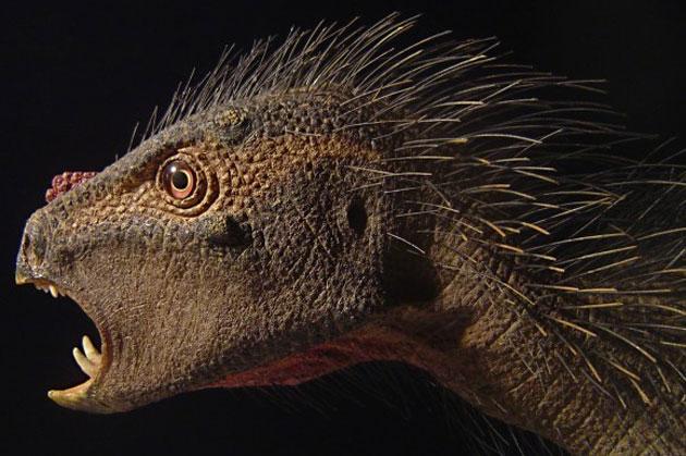 Zwergdinosaurier Compsognathus Pegomastax africanus